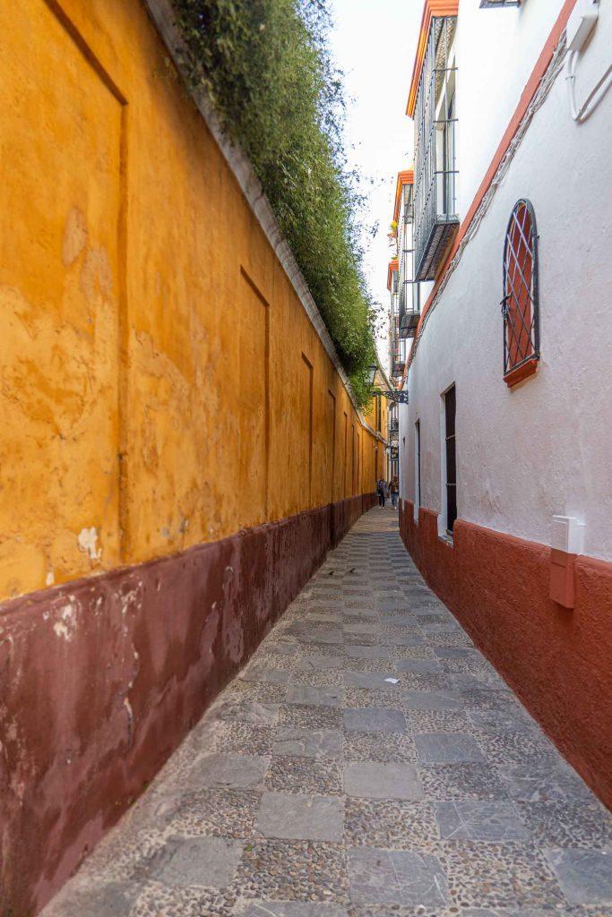 Calle del Barrio Santa Cruz de Sevilla