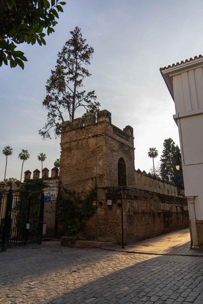 Callejón del agua Sevilla